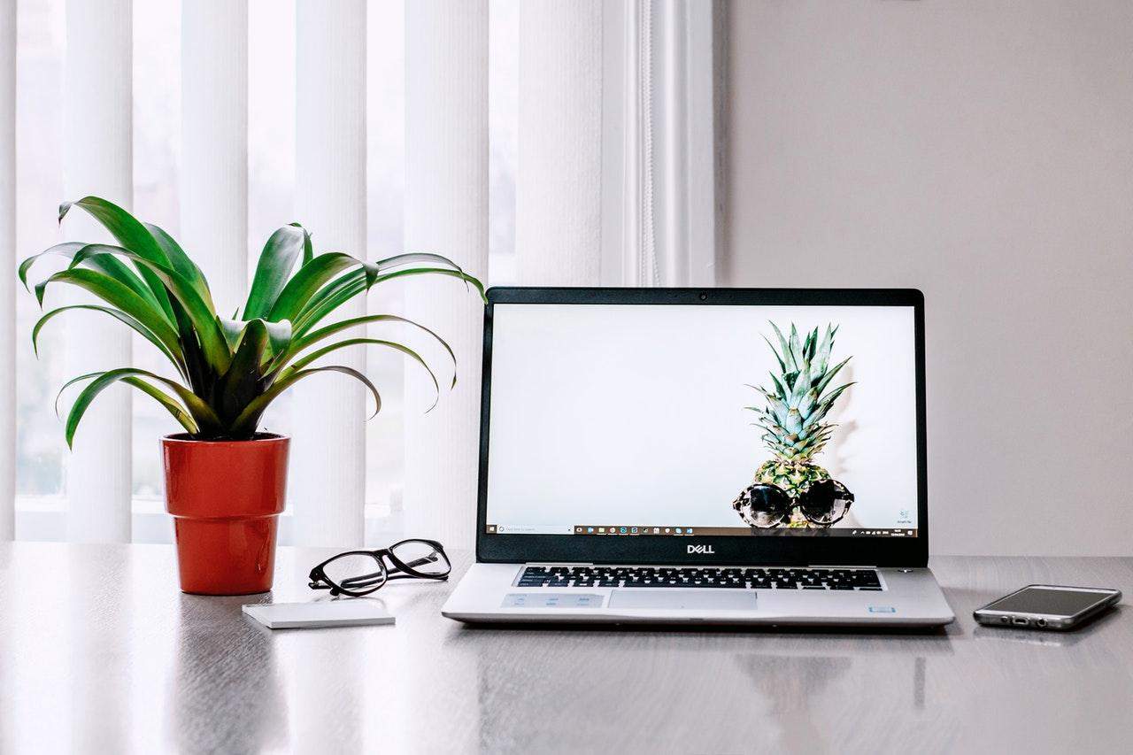 Laptop Skins | Cooling Pads
