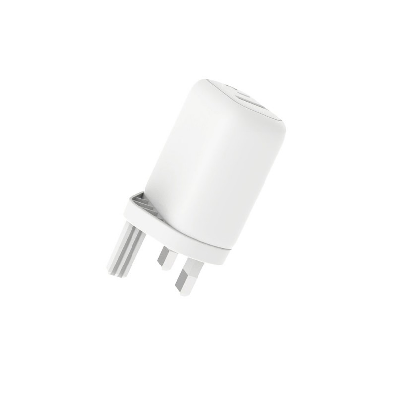 Travel Charger with Type-C to Lightning Cable
